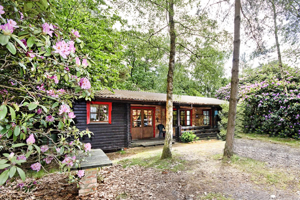 Karelia self catering cottage near the New Forest