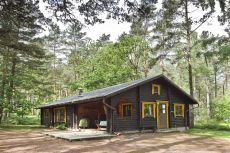 Holiday lodge in the New Forest