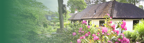 Self catering in Ringwood near New Forest Dorset